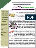 Boletim DNA