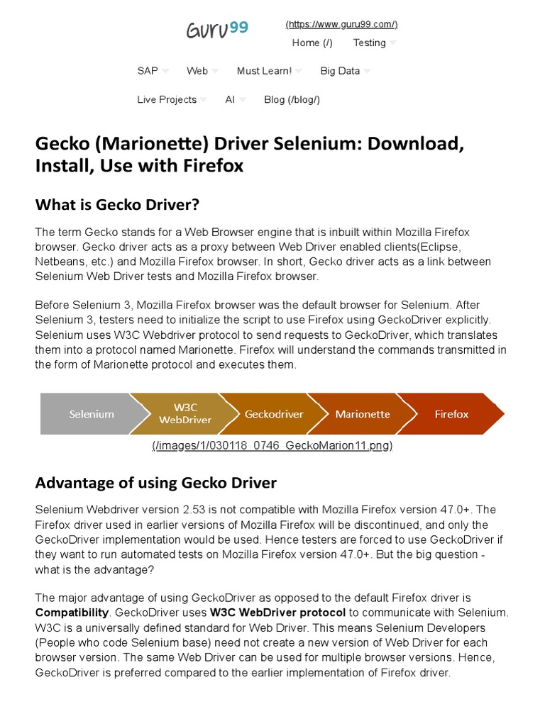 Gecko (Marione e) Driver Selenium: Download, Install, Use