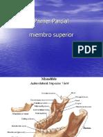 Atlas de Anatomia Ip(2)