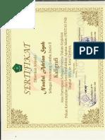 pdf-0001