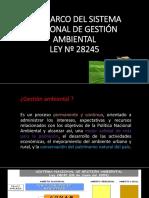 10.1. Ley Marco Del Sist. Amb. Nro. 28245