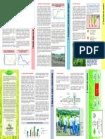 Factores claves en el manejo de arroz de secano.pdf