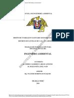 LA EVALUACIÓN DE IMPACTO AMBIENTAL EN BRASIL ANTE EL RETO DE ALCANZAR UN DESARROLLO SOSTENIBLE