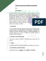 Informe Pampa La Victoria