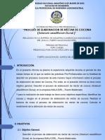 diapositivas de las practicas preprofesionales de david arocutipa coaquira
