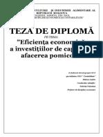 Eficienta economica a investitiilor de capital