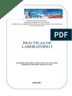 LAB I UNEFA.pdf