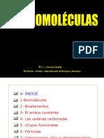 B1_BIOMOLECULAS