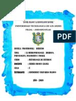 NEURO PSICOLOGIA.docx
