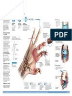 2015-infco-artritis (1)