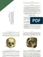 9 - Regiones Comunes Al Cráneo y La Cara - Testut.pdf