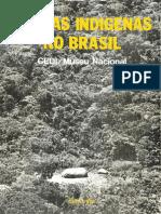 Terras Indígenas no Brasil