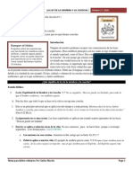 La Ley de La Siembra y La Cosecha 10-17-10 Para Lideres Celulares