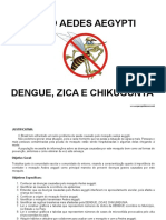 PROJETO AEDES AEGYPTI.doc