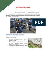 Sectores Del Peru