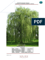 Herbario de Dendrologia Para Imprimir
