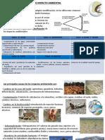 CTMA.T17. EVALUACI�N DE IMPACTO AMBIENTAL