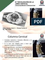 Movilización de columna cervical