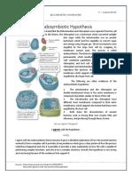 Endosymbiotic Hypothesis.docx