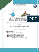 Proyecto de Quimica Orgánica Industrial Gggg