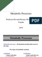 Metabolic Processes - Pr. Pirouzi