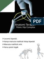 5. Anatomi Terapan Hip Pelvic Complex