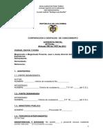 Protocolo de Audiencia Inicial Cpaca