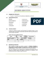 Resumen Ejecutivo .docx
