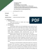 293891183-LAPORAN-PRAKTIKUM-FARMAKOKINETIKA.docx