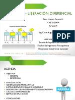 359416031-Pvt-Liberacion-Diferencial.pptx