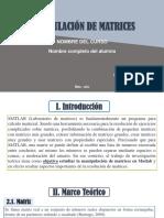 Ejemplo de estructura para presentación de sus trabajos.pdf