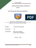 boletin-palta-peruana-final (5)