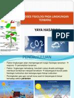 Penentuan Konsentrasi Sulfur Dioksida So