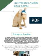 Manual Primeros Auxilios Canino PERROS K9.pdf