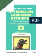 eBook PDF Lo Que Tienes Que Saber Del Labrador Retriever