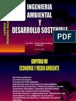 Capitulo VII - Economia Ambiental