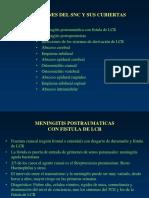 0000000067cnt 01 Guia Medica Hidatidosis