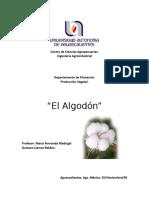 20086032-Monografia-Del-Algodon.doc