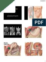 Abdomen Anatomia Radiologica