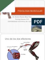 Tejido Muscular Fisiologia 1 ENFER-1