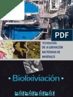 Biolixciviacion Grupo 6