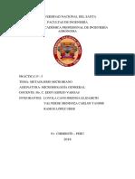 informe-5-microbiología