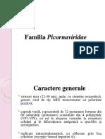 Curs Virusologie Picornavir