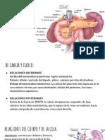 Relaciones de Páncreas (1)