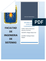 Informe Sobre Derechos Fundamentales