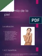 254340691-Anatomia-de-la-piel-pptx.pptx