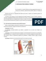 Tema 6. Condición Física y CCFFBB, Fuerza _3º ESO
