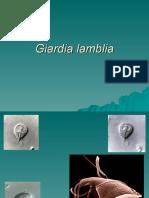 Giardia_lamblia[1]