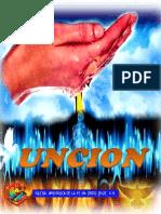 1 Manual de Conexiones
