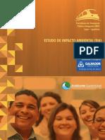 Estudio de Impacto Ambiental de Corredores Viales-Salvador-Brasil